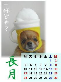 ビールカレンダー