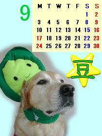 豆カレンダー