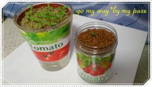 トマト栽培