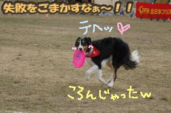 DSC_45721.jpg