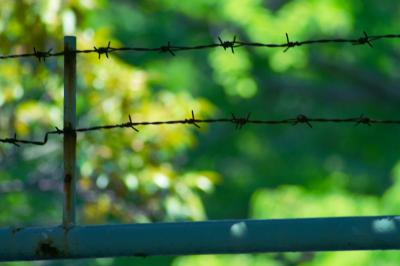 「barbed wire」