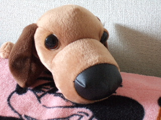 我が家の THE DOG !