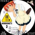 WORKING2_3a_DVD.jpg