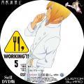 WORKING2_5a_DVD.jpg