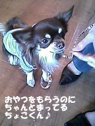 20070322213154.jpg