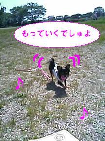 20070430201943.jpg