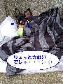 20071016132653.jpg