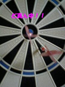 20071019083812.jpg