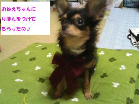 TS330087.jpg