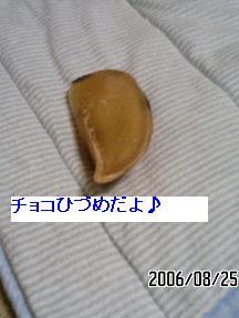 hizume1.jpg