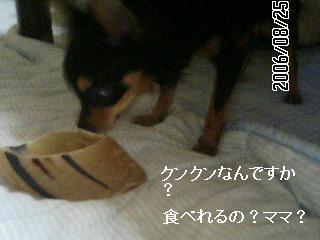 hizume2.jpg