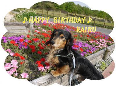 ライル8歳誕生日