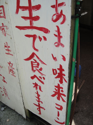 2011081546.jpg