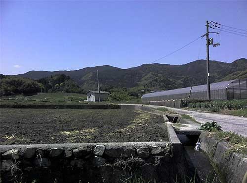 fc2_4_19(昼間の田んぼ道 )