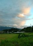fc2_7_14_1(夏の緑に・・・)