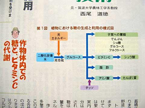 fc2_7_2(タキイ種苗/園芸新知識)