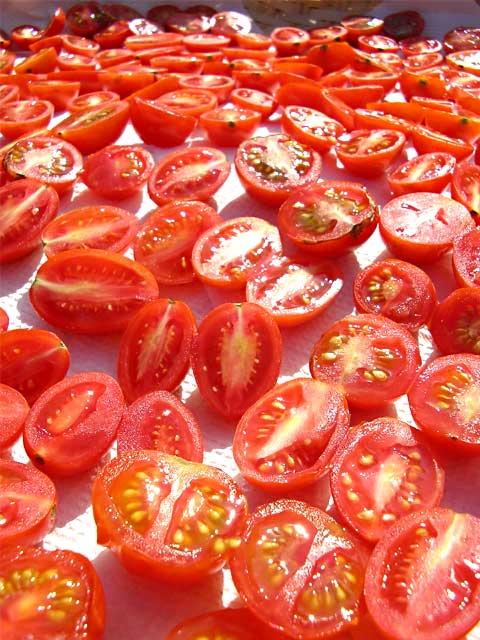 fc2_8_15_3(ミニトマトのドライトマト作り)