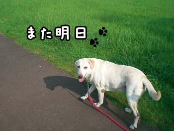 20060830104700.jpg