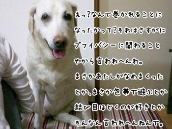 20061004180350.jpg