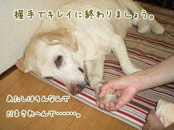 20061013112639.jpg