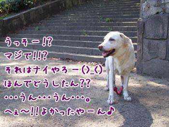 20061015203044.jpg