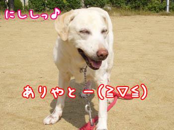 20061021005823.jpg