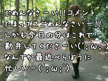 20061021011253.jpg