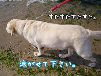 20061108002529.jpg