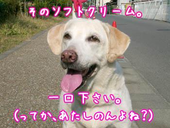 20061108003539.jpg