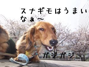 070404_09.jpg
