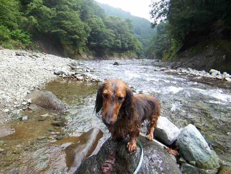 川遊び0909_2