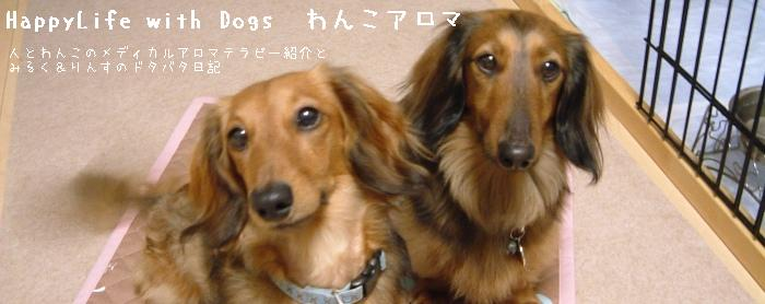 Happy Life with Dogs! わんこアロマ