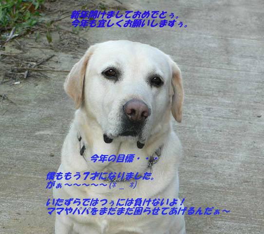 20070101160756.jpg