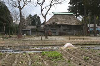 oginoshima06.jpg