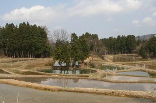 okuechigo01.jpg