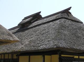 oouchi04.jpg