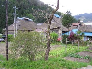 shichiga09.jpg