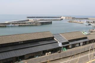 tsutsuishi1-2.jpg