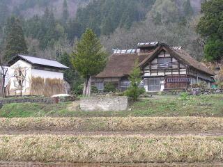 yonezawa05.jpg