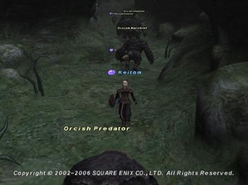 20061229184833.jpg