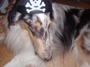 海賊キャップ。イケてる?ゼロ!