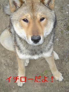 20070116100859.jpg