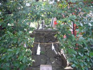 大宮氷川女体神社7
