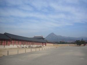 韓国(2011年2月16日)3