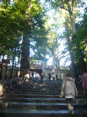 伊勢(2011年10月31日)5