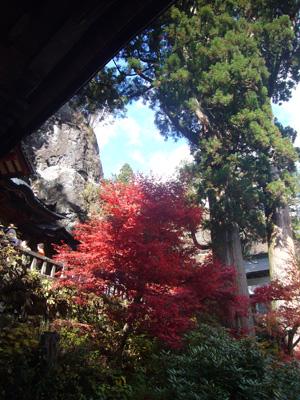 榛名神社(2011年11月12日)11