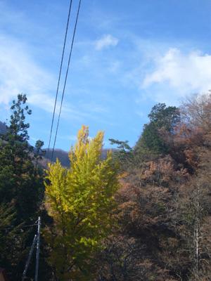 榛名神社(2011年11月12日)21
