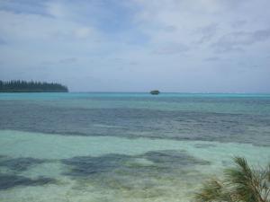 ニューカレドニア2日目(2011年11月22日)32