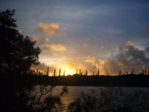 ニューカレドニア2日目(2011年11月22日)44