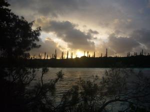 ニューカレドニア3日目(2011年11月23日)16